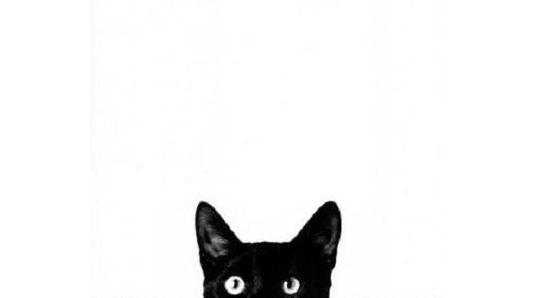 La curiosidad mató al gato, o le ofreció un empleo.
